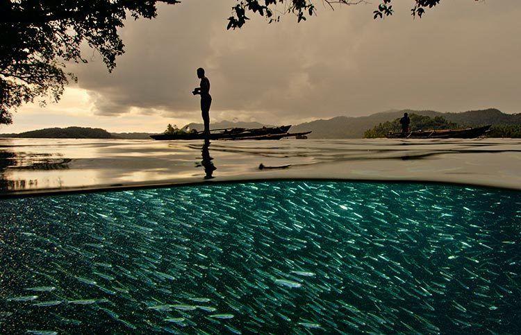 david-doubilet-o-fotografos-tou-ypobrixiou-kosmou-double-view-sunrise-ingolden.gr