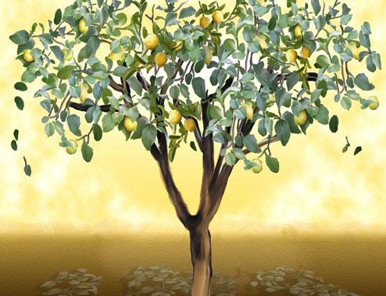 odi-se-ena-lemoni-aroma-ingolden.gr