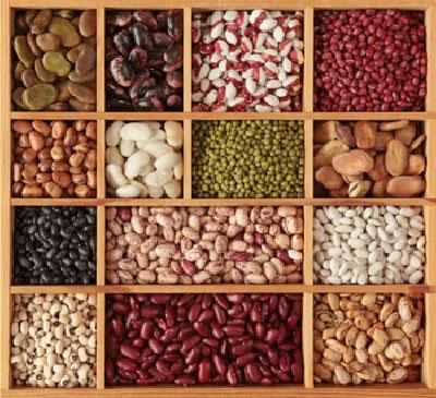 proteines-ingolden.gr