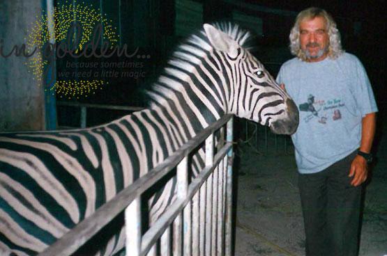 zebra-ksanthos-magos-ingolden4.gr_