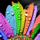 Χρώματα, τι συμβολίζουν…