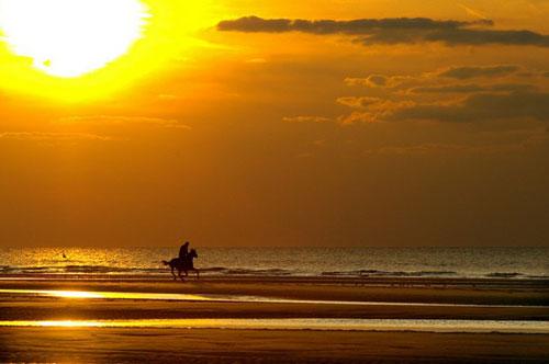 thelo-na-ksero-an-tolmas-ingolden.gr-sunshine-moon-horse