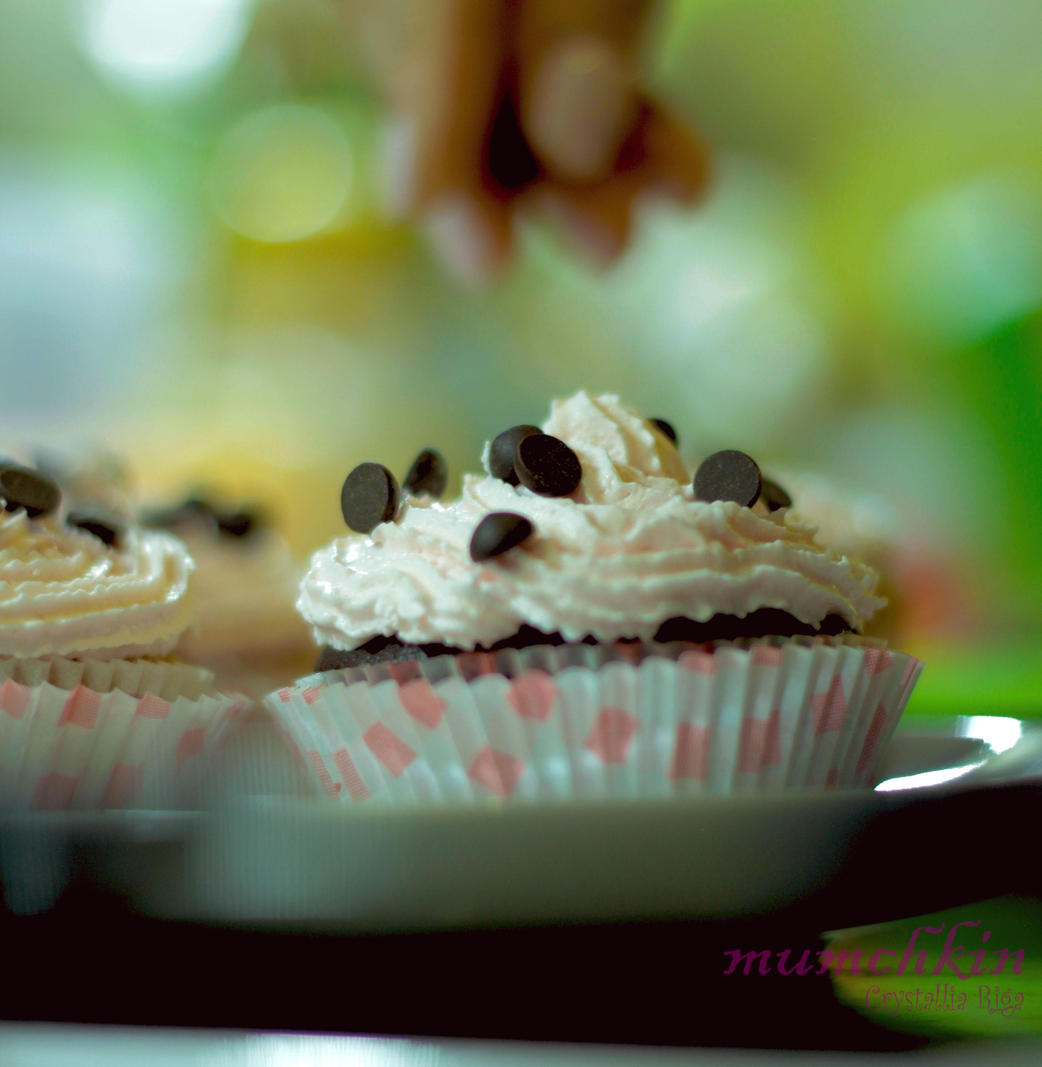 cupcakes-poluxroma-suntages-sweets-gluka-crystallia-ingolden-homemade-mumchkin
