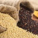 Κινόα – quinoa, η Χρυσή τροφή!