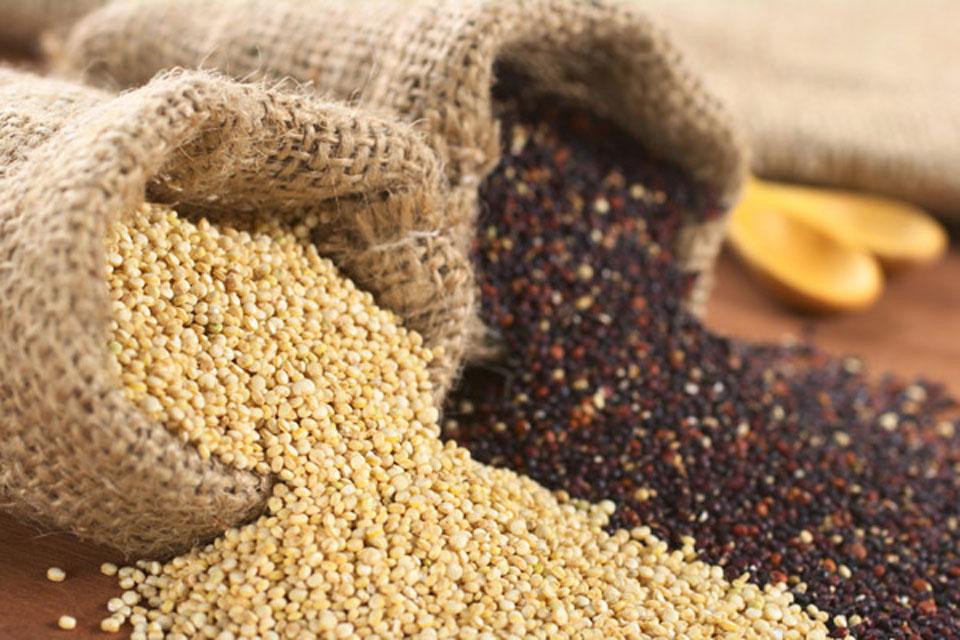 Kinoa-i-xrysi-trofi-quinoa-inGolden.gr.jpg-mageiriki-ygeia-proteines-xrisi-trofi.sporoi
