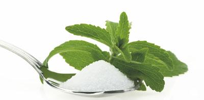 stevia-to-fysiko-glykantiko3-ingolden.gr