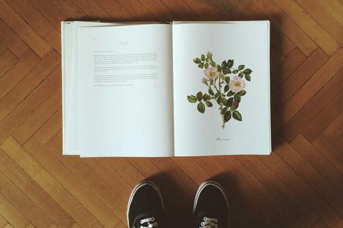 Τα λουλούδια, ο έρωτας που έχει κρατήσει περισσότερο από όλους.