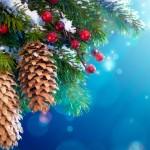 Χριστουγεννιάτικα δέντρα, πρωτότυπες ιδέες!