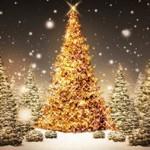 Χριστουγεννιάτικο δέντρο, τι συμβολίζει