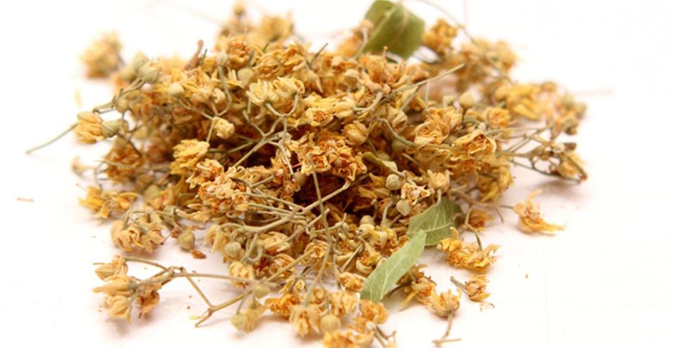 tilio-i-flamouria-ingolden.gr-votana-tea