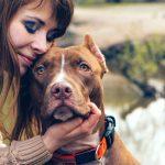Χάνοντας το σκύλο σου αδειάζει η ζωή σου..