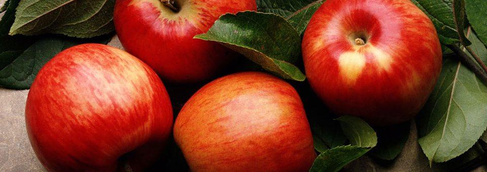 Μήλο, σύμβολο γνώσης και αθανασίας!